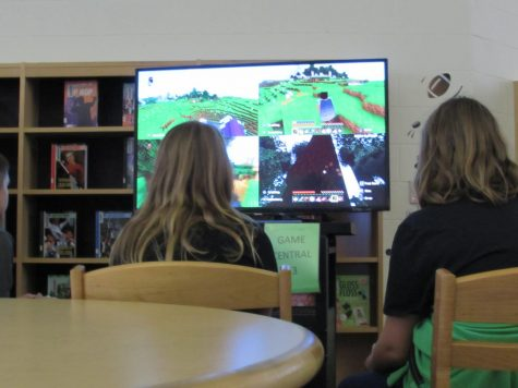 Do Video Games Affect Students Grades?